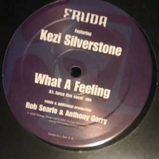 "Fruda feat Kezi Silverstone What A Feeling Dub Mix Vinyl Record 12"" EP"