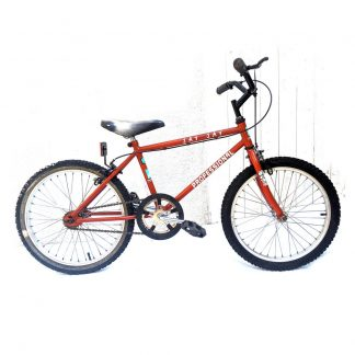 Professional Jay Jay 20″ ATB Kids Bike